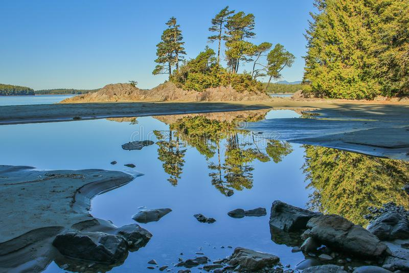 On the beach of Tofino, Vancouver Island, Canada royalty free stock photo