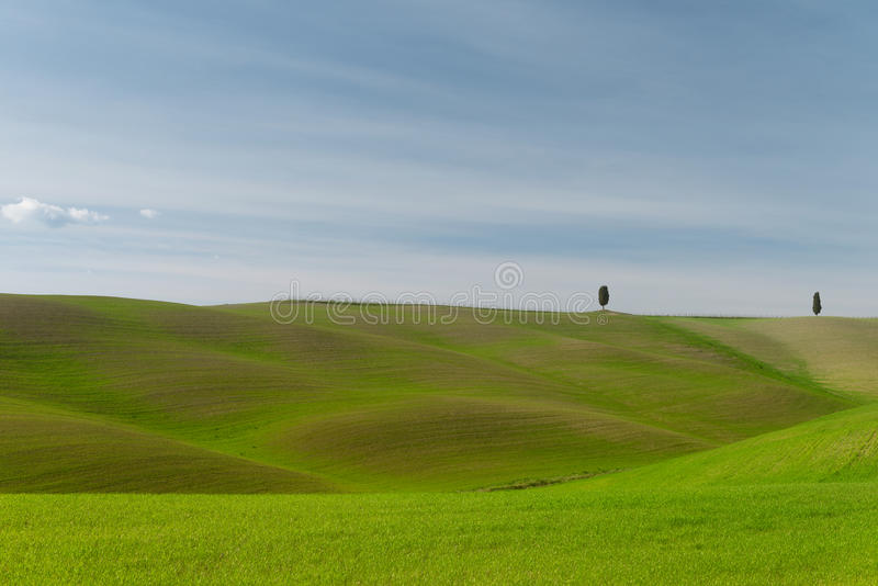A walk in the Tuscany nature royalty free stock photos