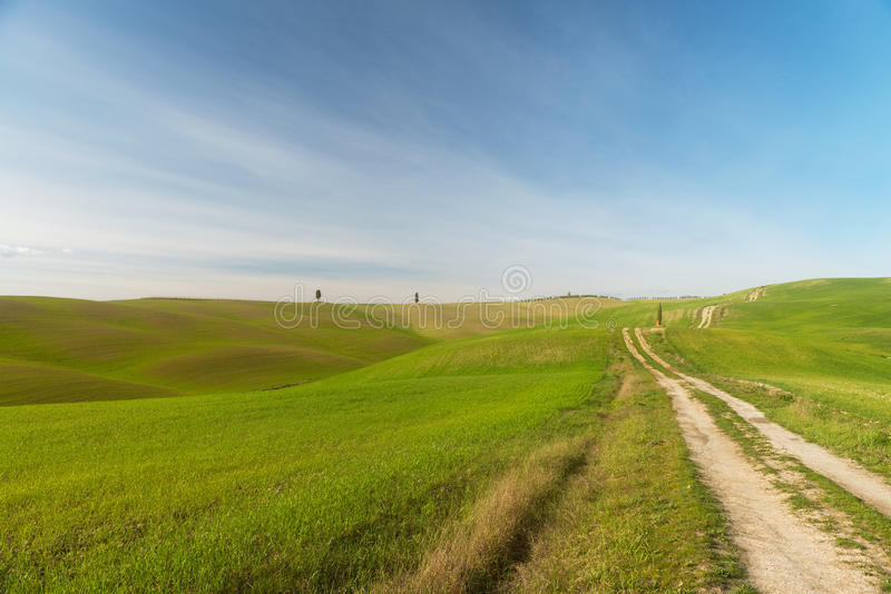 A walk in the Tuscany nature royalty free stock photo