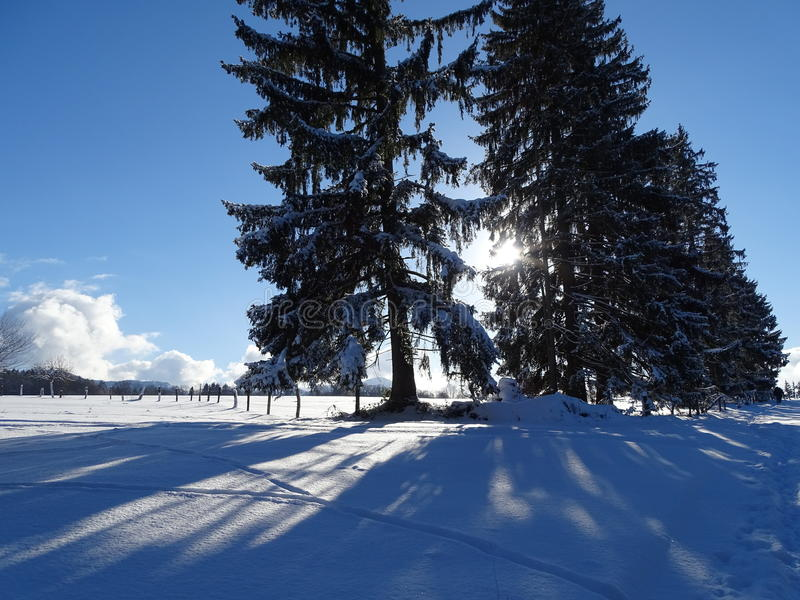 Walk on Wackersberg. Photo/Picture was taken on Wackersberg near the Bad Tölz, Bayern in winter. We can see snow cover. Snow is also on the branches mighty stock photo