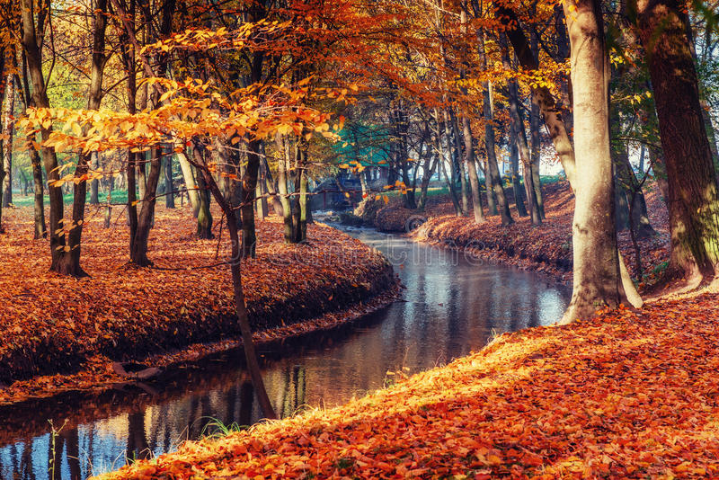 Walk way bridge over river with colorful trees in autumn time stock photo