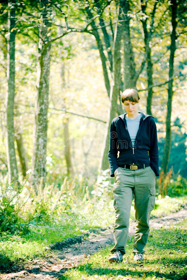 Walk in the woods royalty free stock images