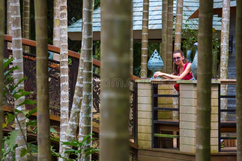 Walk in the Yalong Bay Tropic Paradise Forest Park, Hainan, Chin royalty free stock image