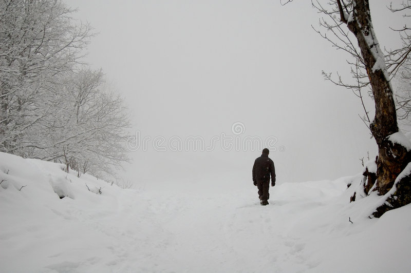 Walker in snowy countryside