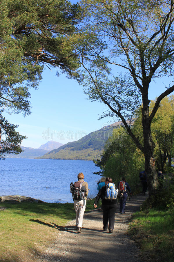 Walkers by Loch Lomond on West Highland Way. Group of walkers setting off to climb Ben Lomond seen on the West Highland Way where the footpath runs along the royalty free stock images