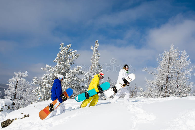 Download Walking stock image. Image of season, climbing, moving - 12270973