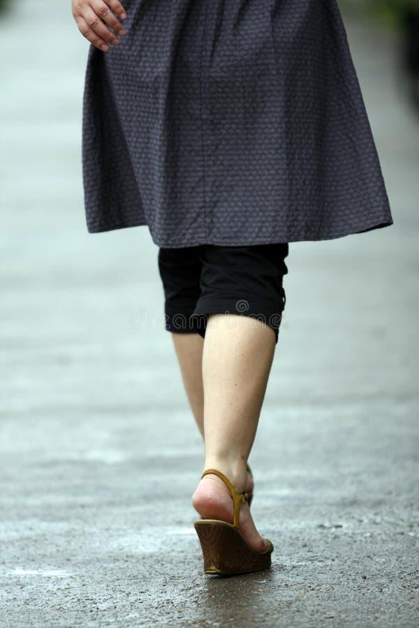 Free Walking Stock Images - 5394054