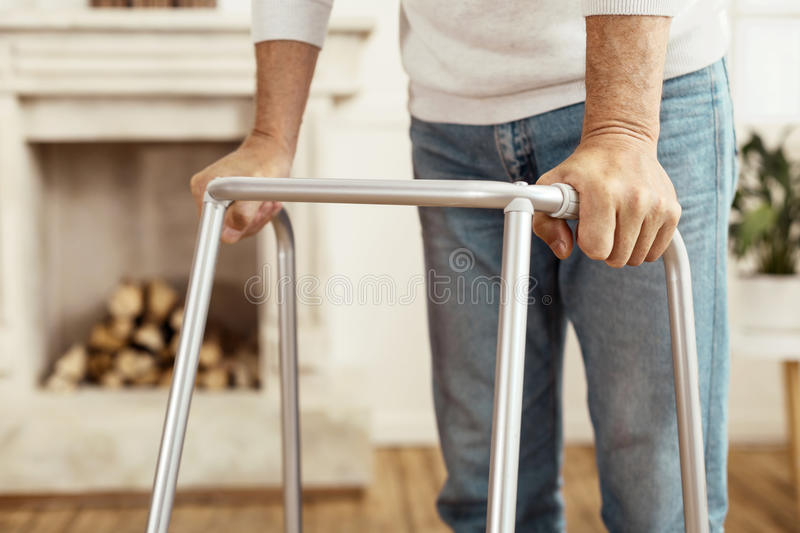 Close up of a professional walker royalty free stock images