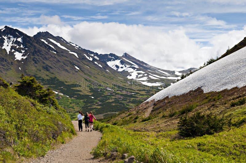 Walking in Alaskan mountain trail stock photos