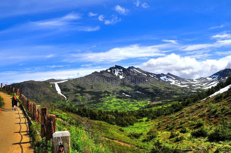 Walking in Alaskan mountain trail stock photo