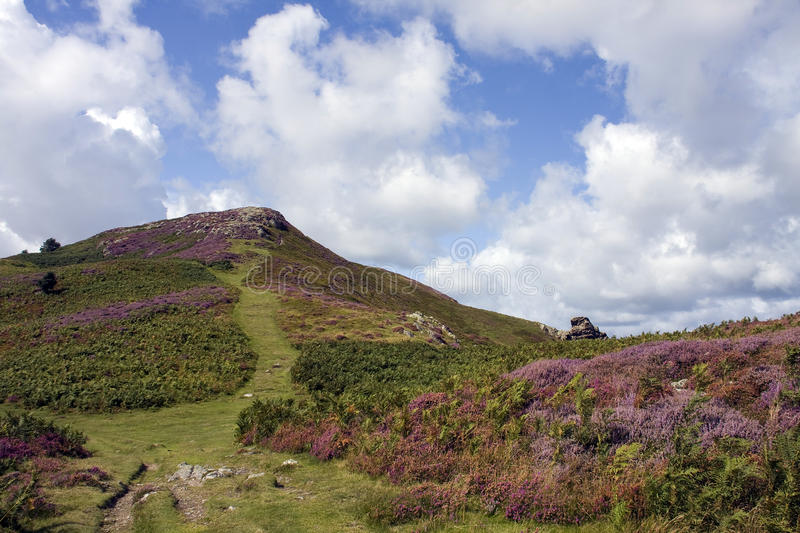 Download Walking Around Conwy And Its Mountain Stock Image - Image: 11697247
