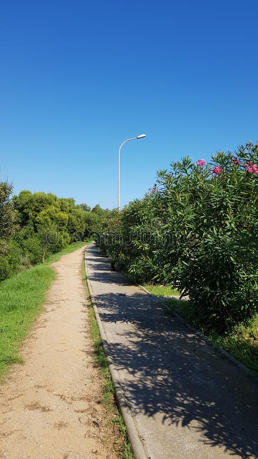 Sky Garden Walk: Download 490 Royalty Free Photos