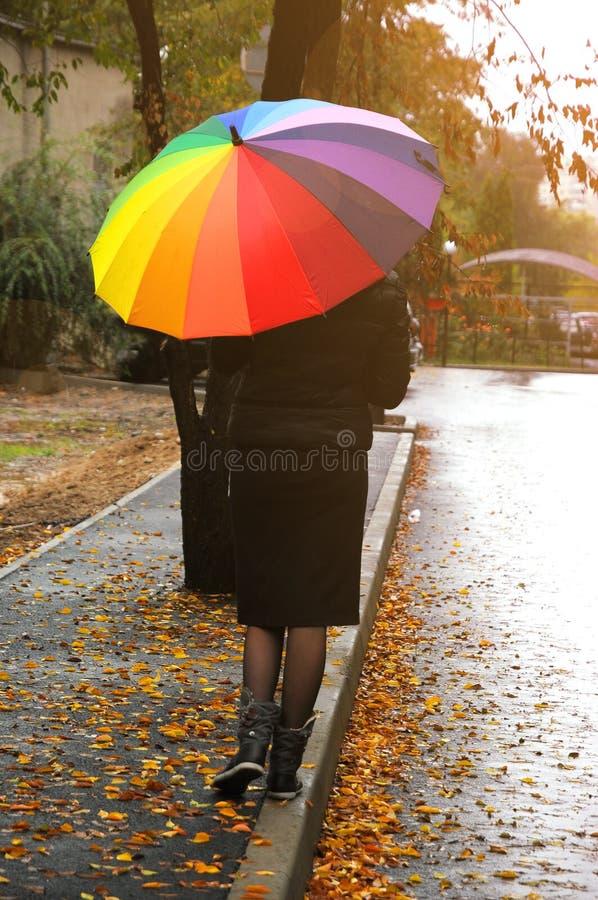 Walking autumn stock photo