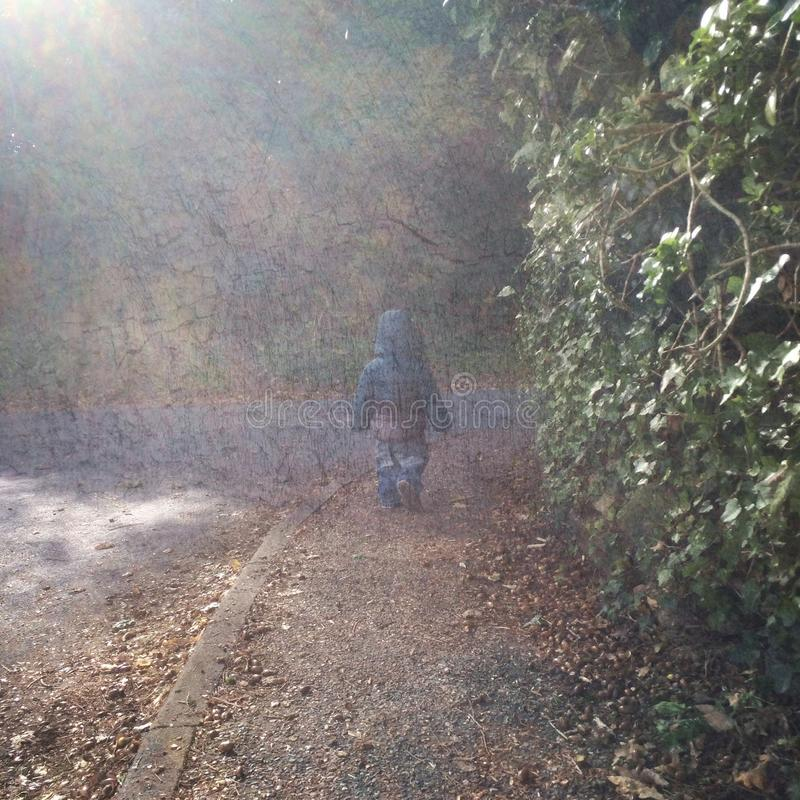Walking in the autumn leaves royalty free stock photography