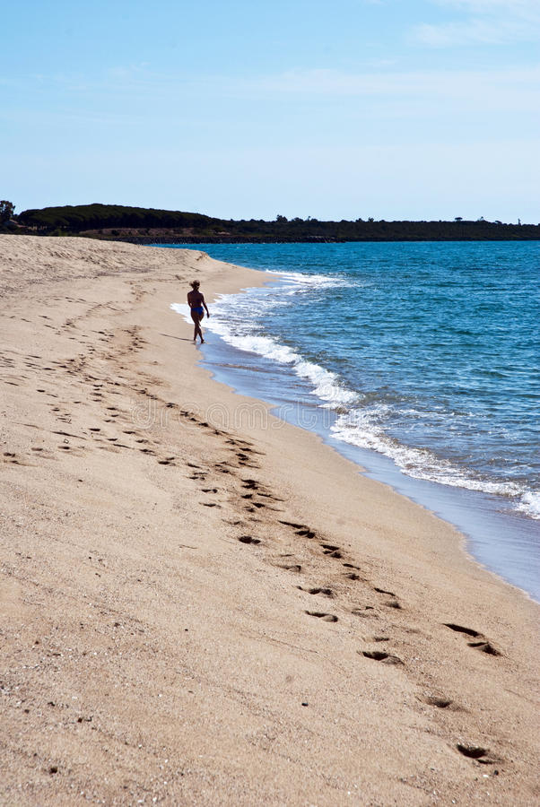 Download Walking on the beach stock image. Image of blue, alone - 15046595