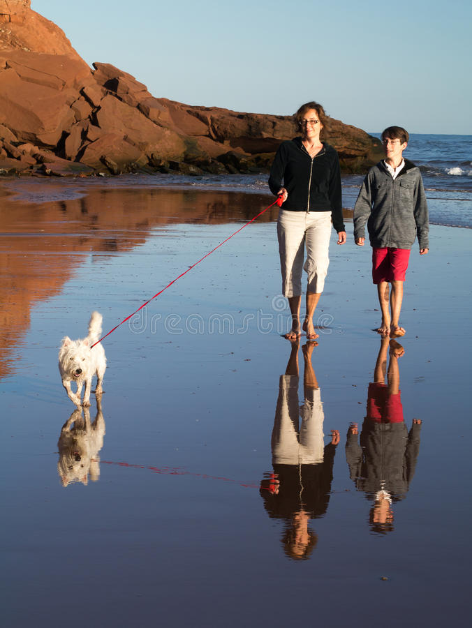Download Walking on the beach stock photo. Image of beach, walking - 26318616