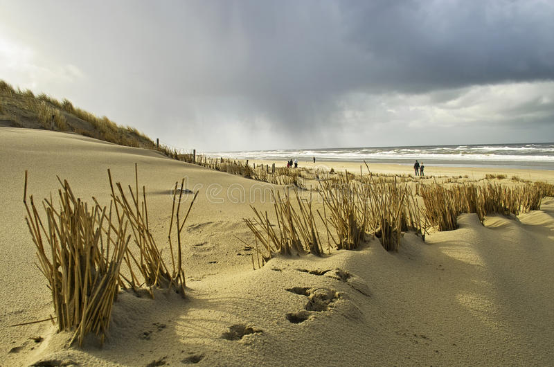 Walking on the beach in Holland stock photos