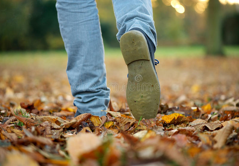 Walking with boots on autumn leaves. Male walking with boots on autumn leaves royalty free stock photos