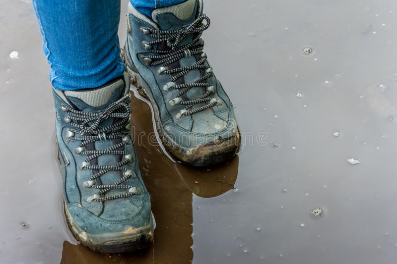 Walking boots. Female wearing walking boots standing in shallow puddle close up stock image