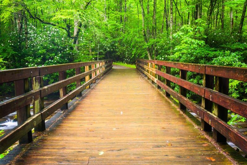 Walking bridge over the Oconaluftee River, at Great Smoky Mountains National Park, North Carolina. stock photography