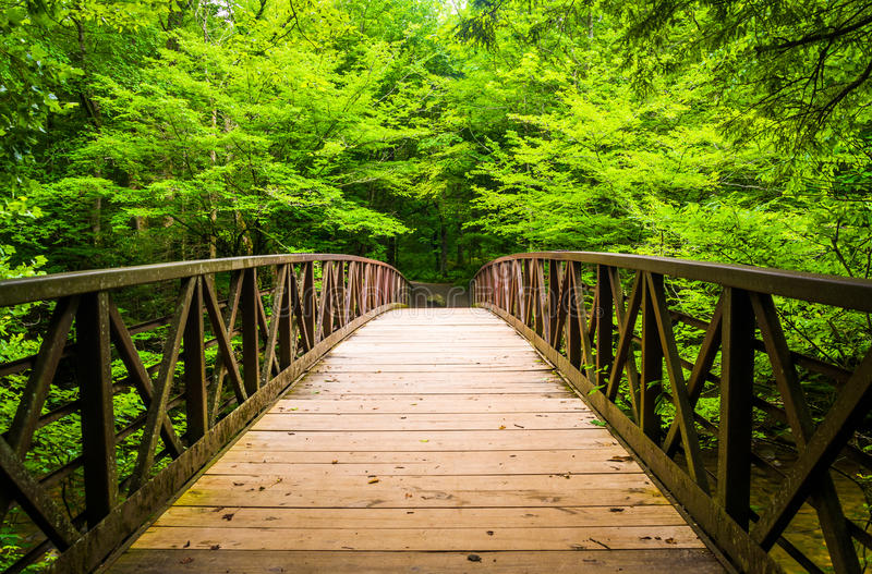 Walking bridge over a stream, at Great Smoky Mountains National stock photos