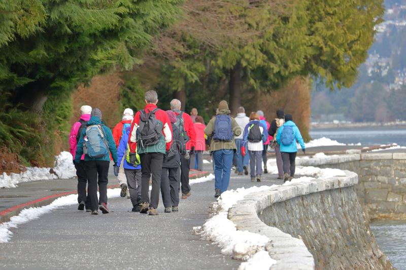 Walking Club and Scenic Landscape royalty free stock photography