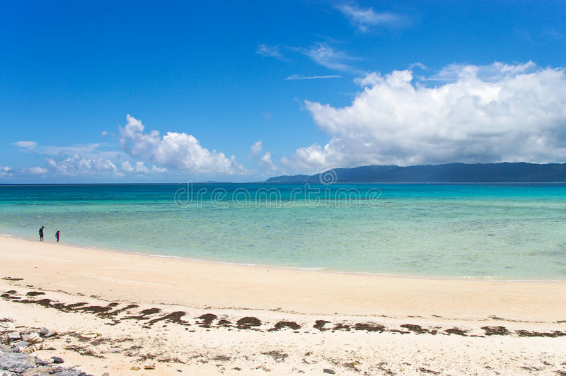 Download Walking On A Deserted Tropical Beach Stock Photo - Image: 4512154