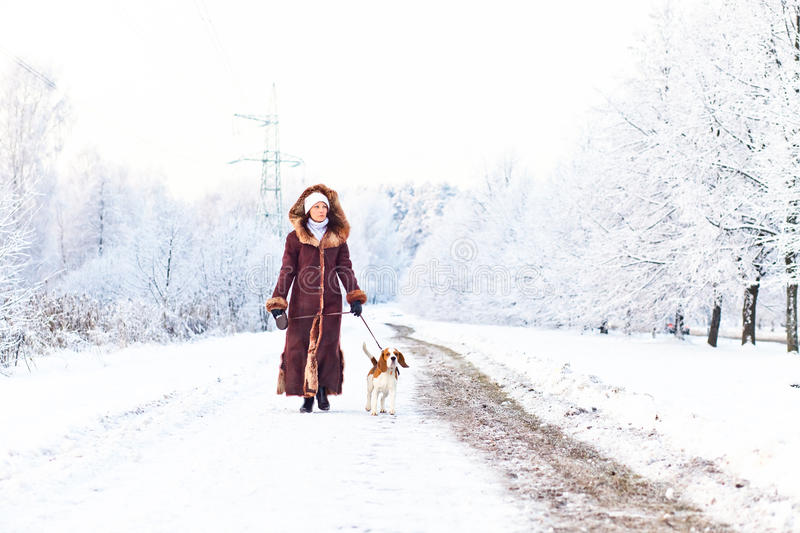 Walking with a dog. The woman on winter walk with a dog royalty free stock images