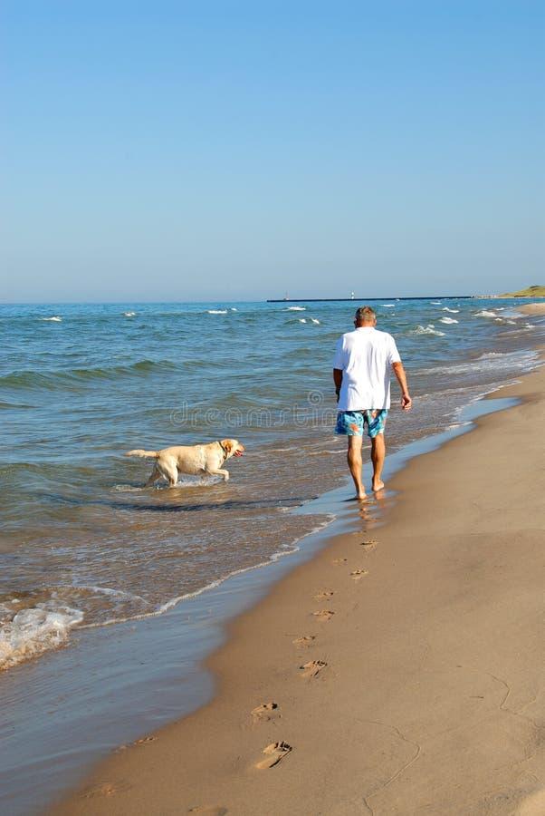 Walking the Dog, Lake Michigan stock photography