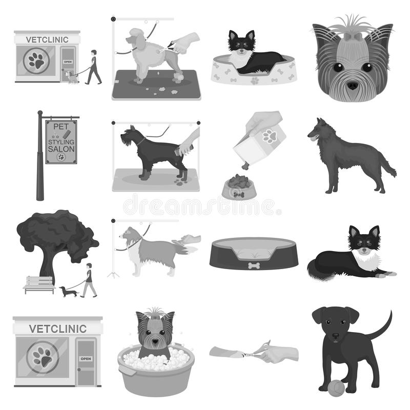 Walking with a dog, a vet clinic, a dog haircut, a puppy bathing, feeding a pet. Vet clinic and pet care set collection. Icons in monochrome style vector symbol vector illustration