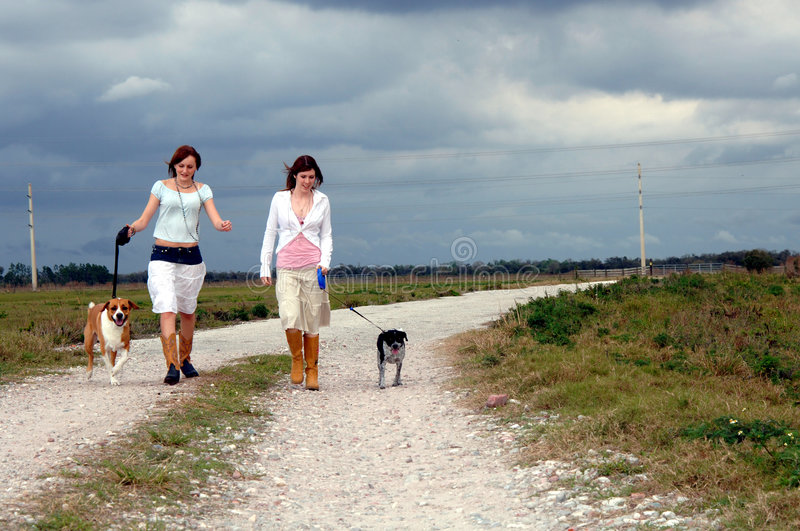 Walking dogs on country road. Two young women walking dogs on a country road royalty free stock photo