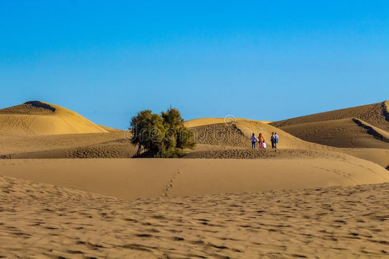 Walking on the dunes of Gran Canaria stock images