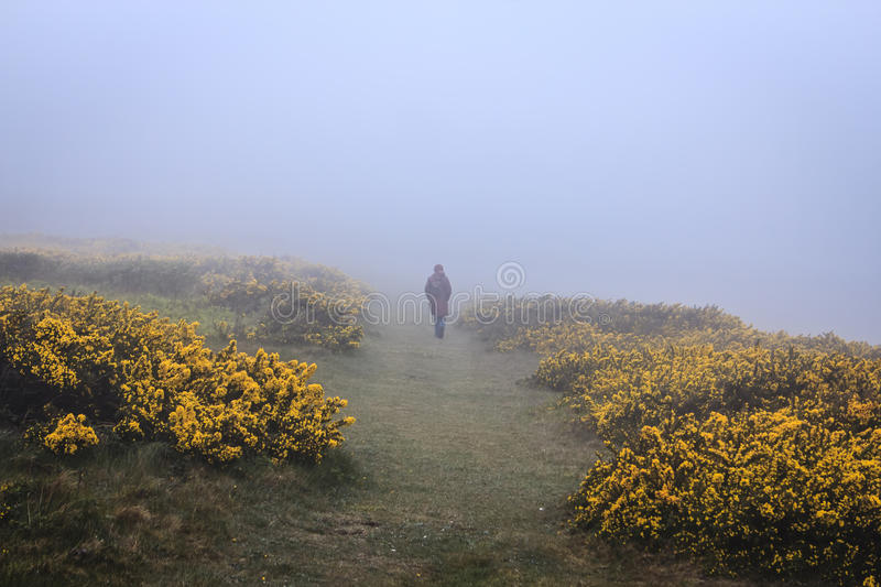 Walking in the fog. royalty free stock photography