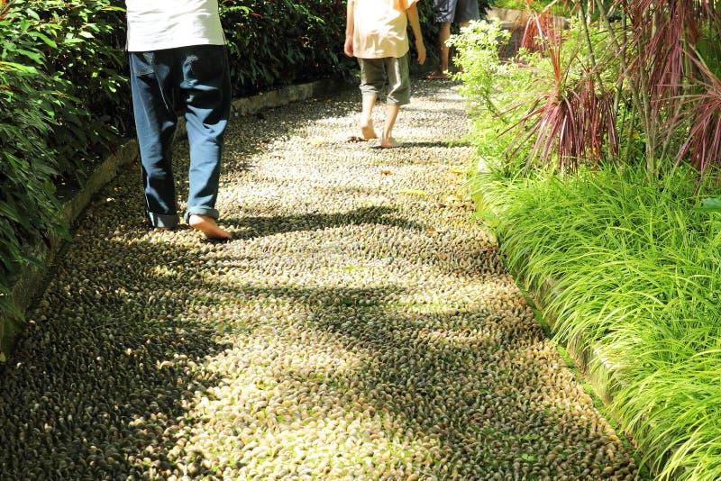 Walking on Foot Reflexology Path. Image of people walk on foot reflexology path in the park stock images