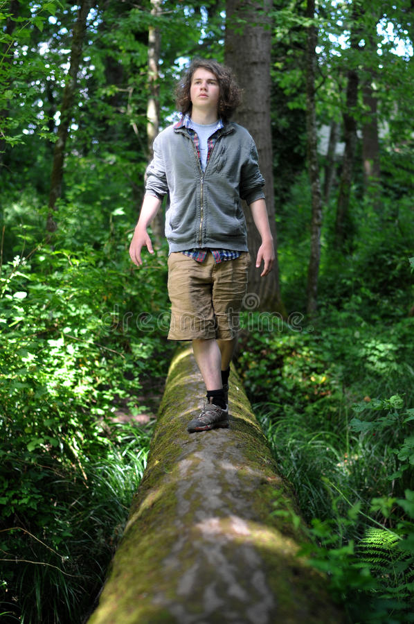 Walking in a Forest. A young adult walking across a fallen tree going across a river in the woods royalty free stock images