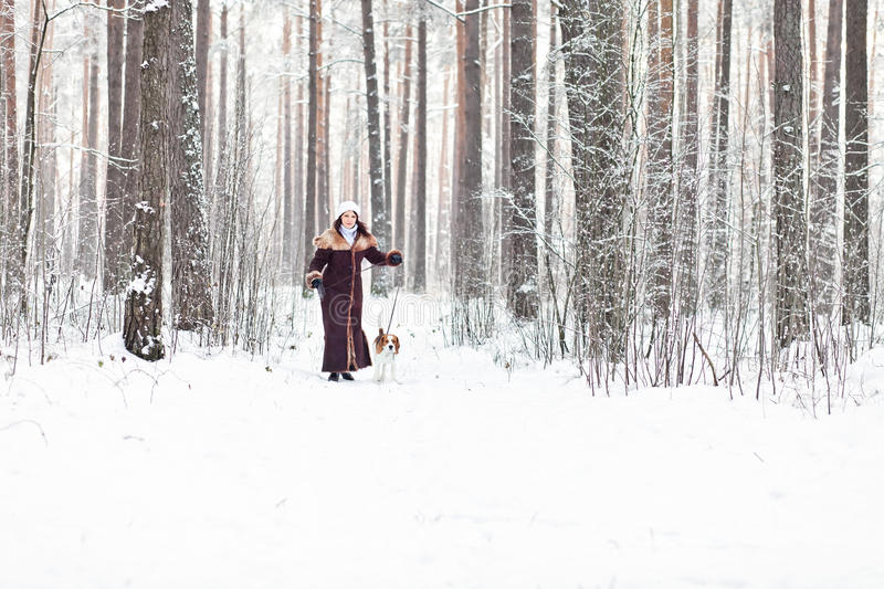 Walking in forest. The woman on winter walk with a dog royalty free stock photos