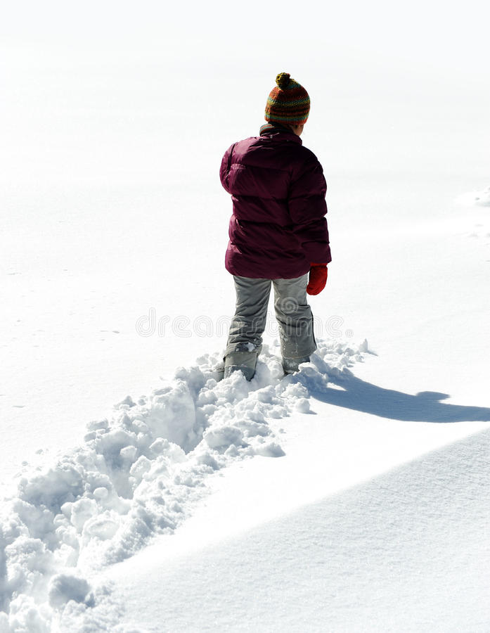 Free Walking In Snow Stock Photos - 22279213
