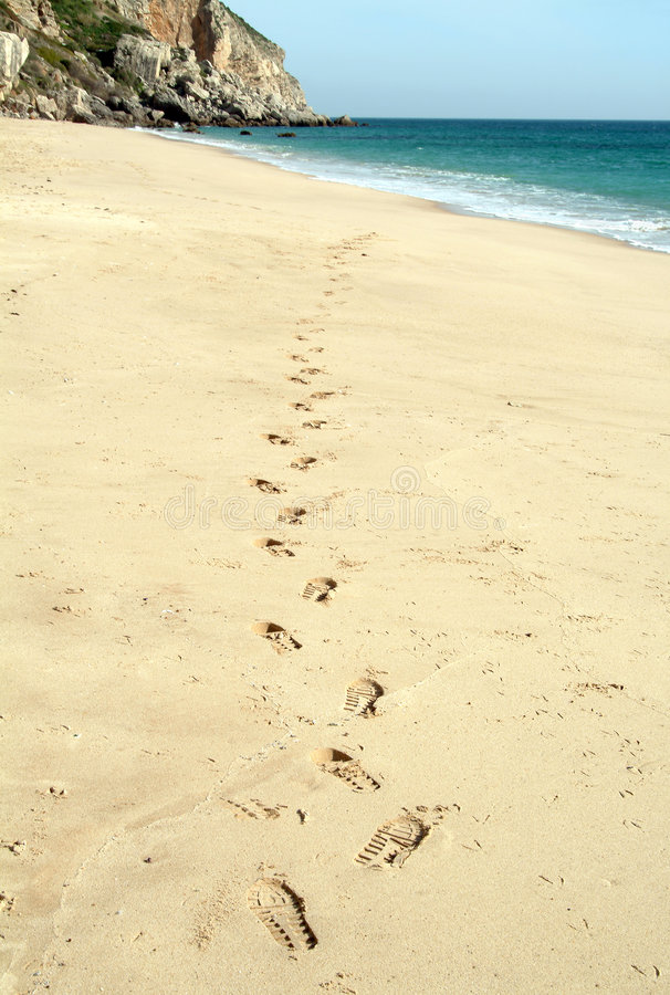 Free Walking In The Beach Stock Photography - 555912