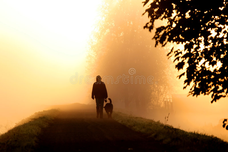 Walking in the mist stock photography