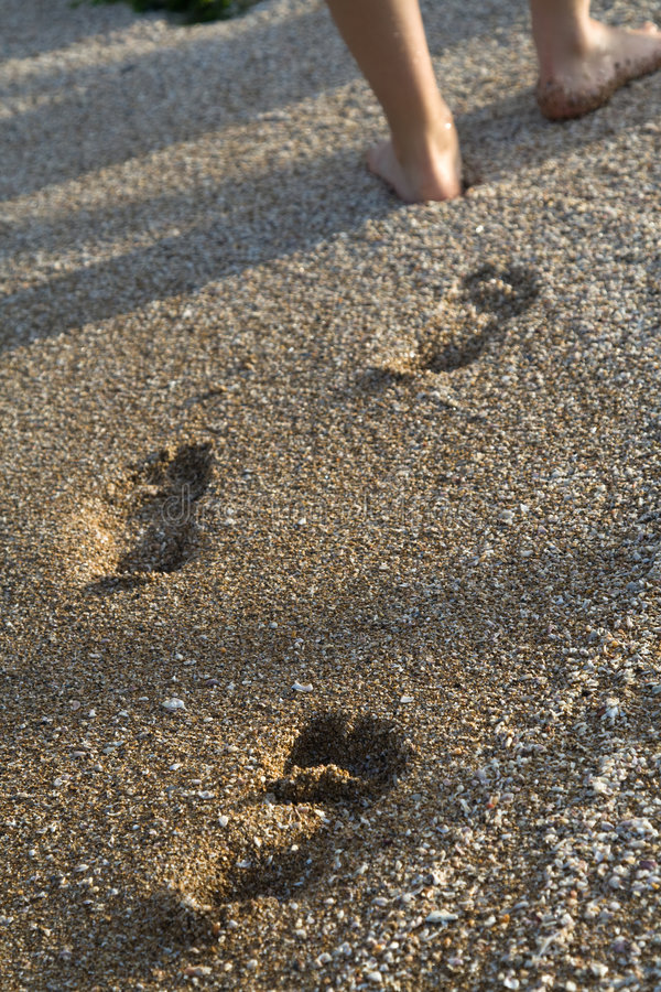 Free Walking On The Sand Stock Image - 6922491