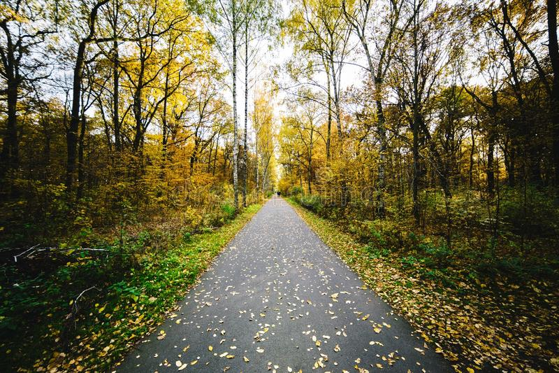 Walking Path stock photography