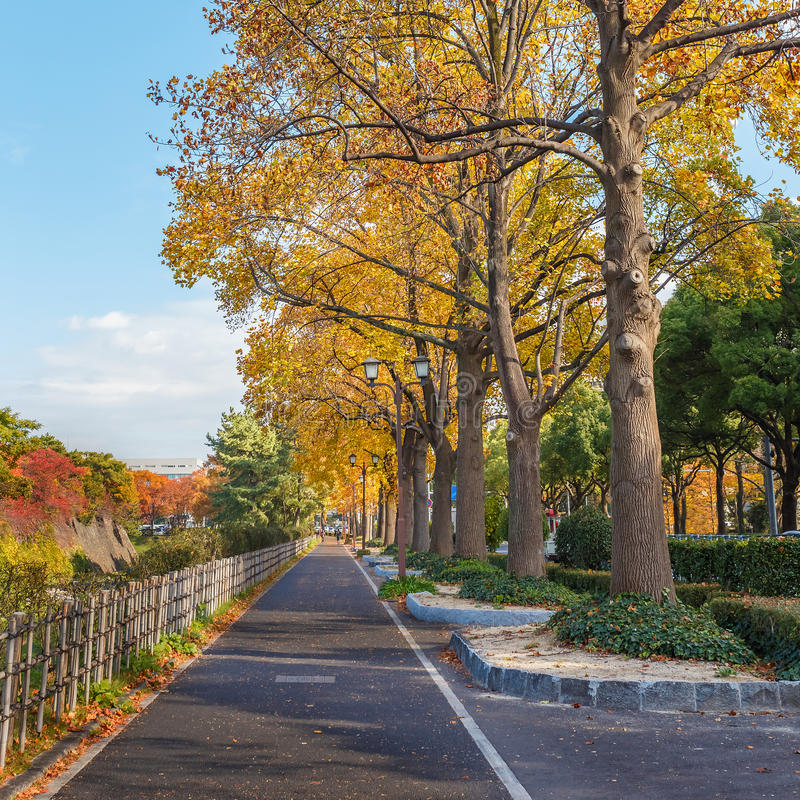 Walking Path along side Nagoya Castle royalty free stock images