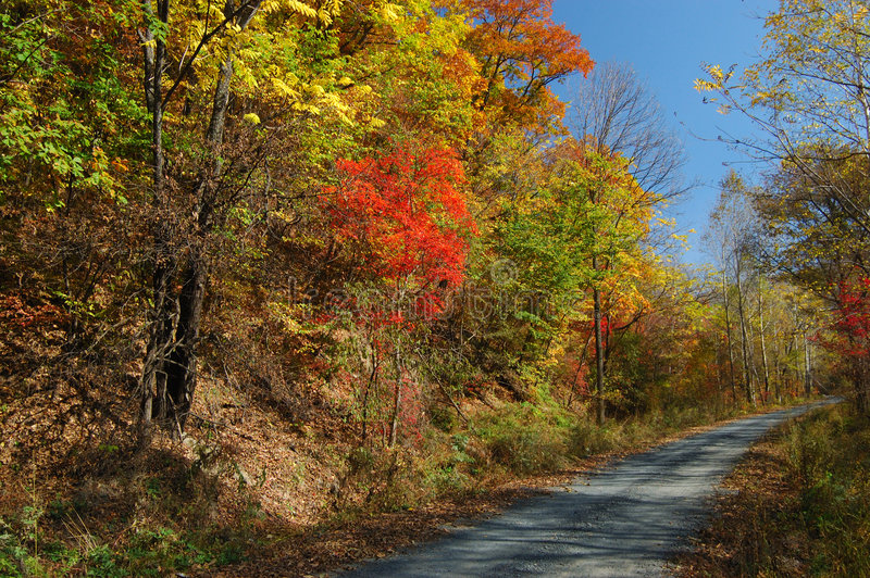 Download Walking Path By Colourful Hillside Stock Image - Image: 3895477