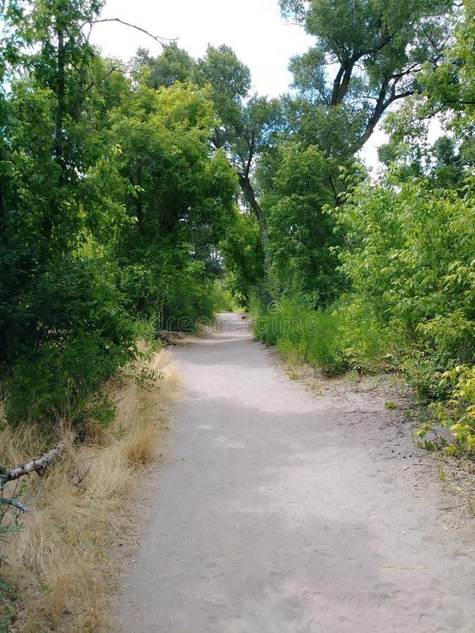 Walking the path stock photo