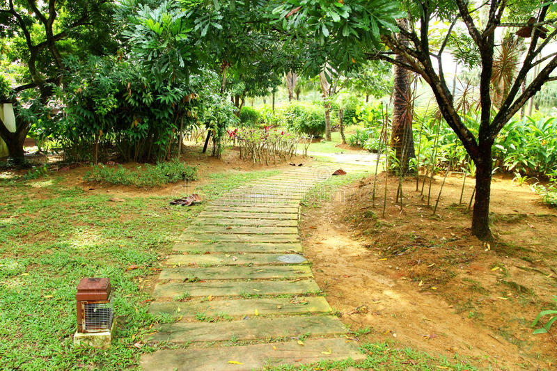 Download Walking Path in Garden stock photo. Image of cottage - 16419712