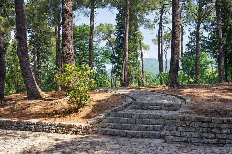 Walking path in Large Town Park. Tivat city,Montenegro stock photo