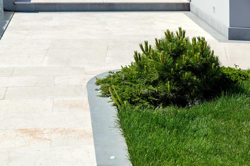 Walking path of marble tiles. Walking path of marble tiles with a gray stone curb with a green lawn and pine plants on a sunny summer day in the backyard of the royalty free stock image