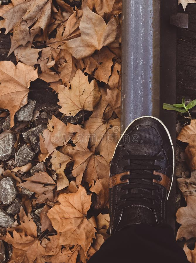 Walking on the rails, fallen leaves. Trip, landscape, time, amazing, fantastic, beautiful, foot, steel, railsby, dry, way, winter, has, arrived royalty free stock images