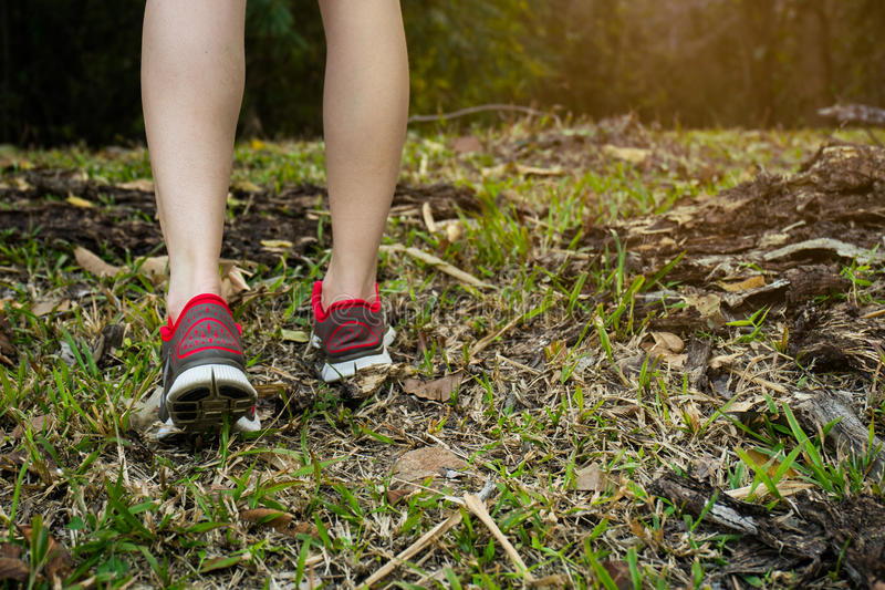 Walking or running legs in forest, adventure and exercising royalty free stock photos