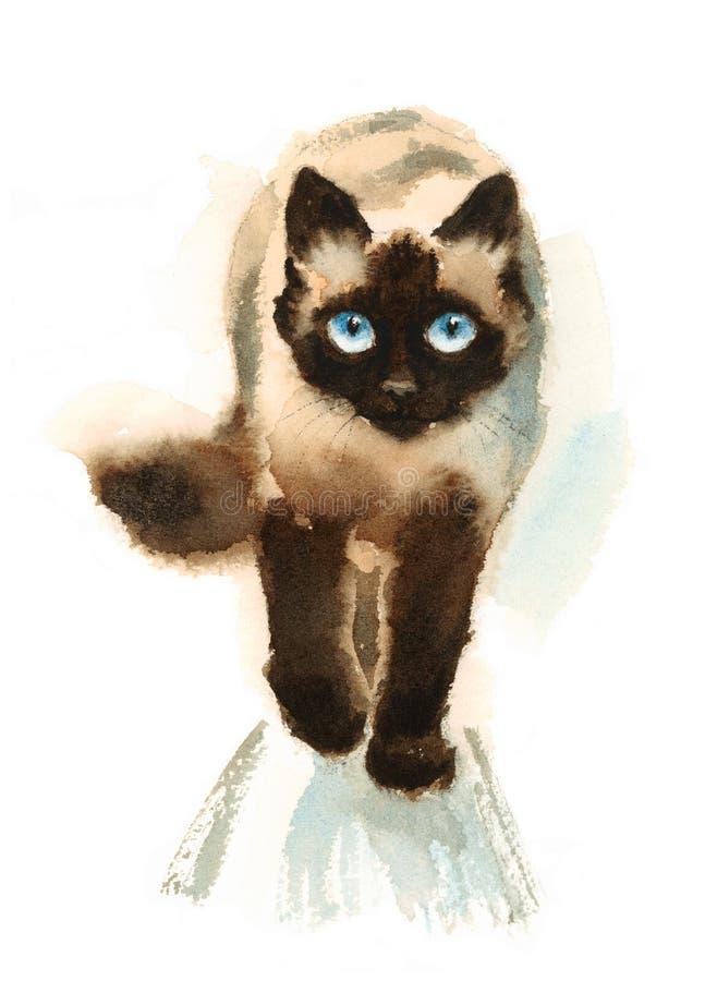 Walking Siamese Cat Watercolor Animals Pets Illustration
